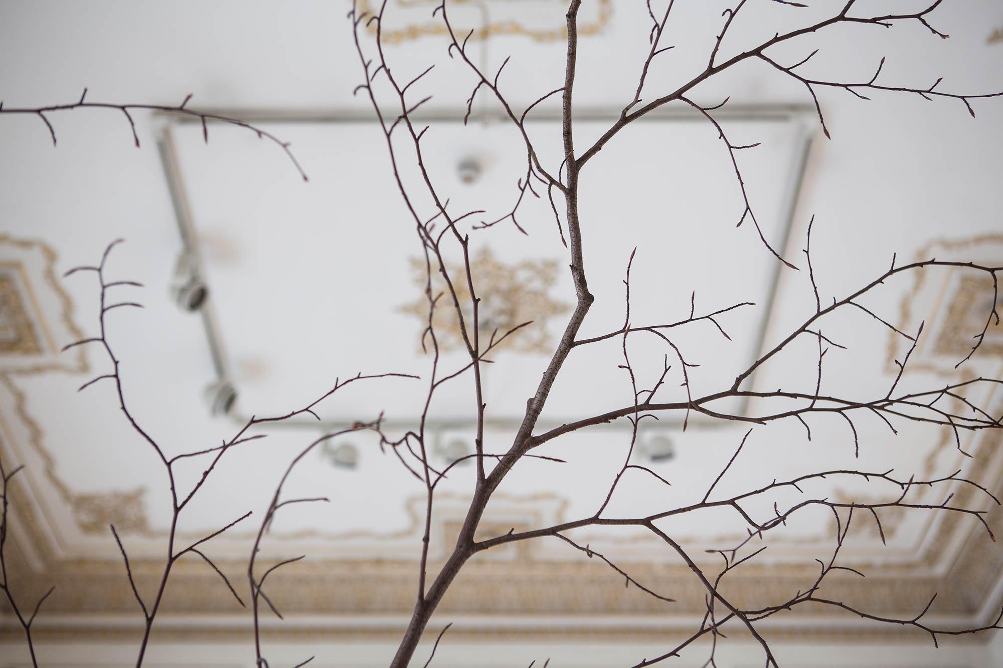 Installation View | MARIO MERZ | Numbers are Prehistoric | Photo Natalia Tsoukala | Courtesy NEON<br /> <br />